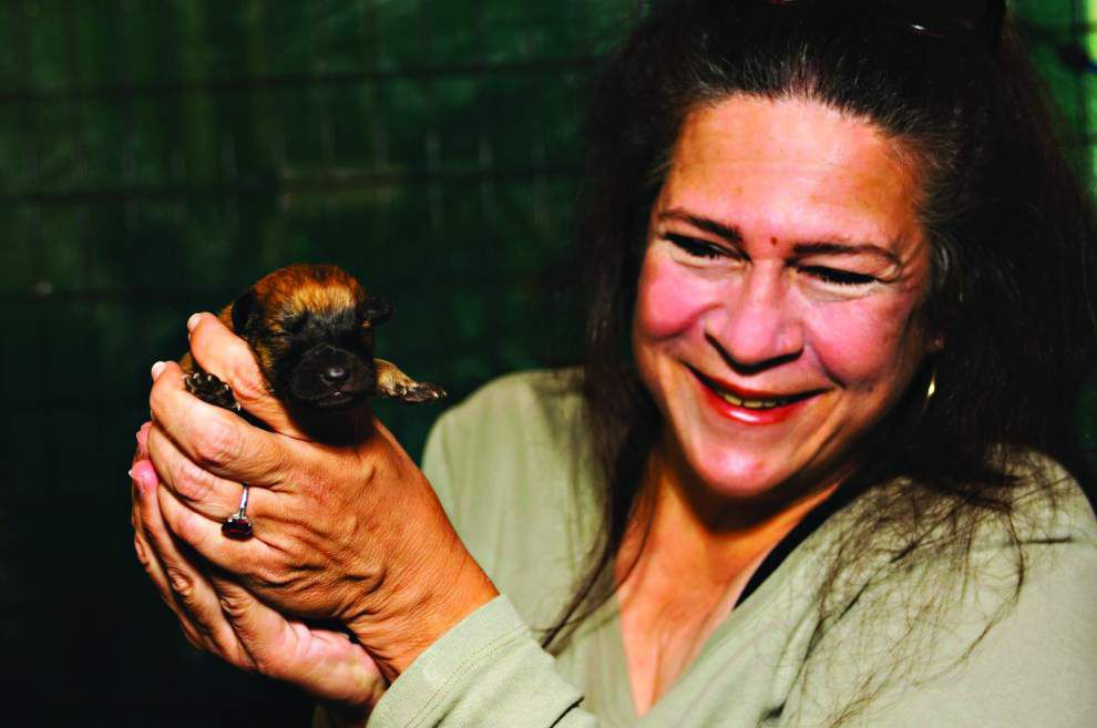 Animal Rescue: Animal Rescue New Orleans founder's life to be honored _lowres