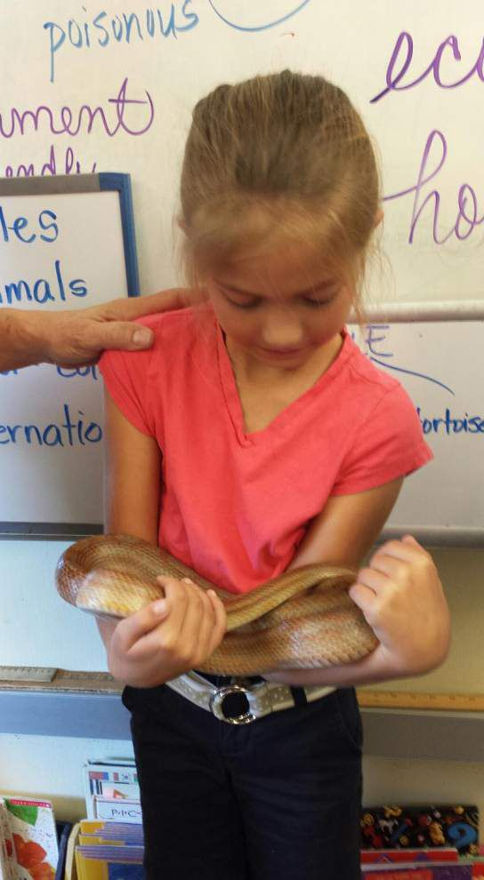Bains students get animal visits _lowres