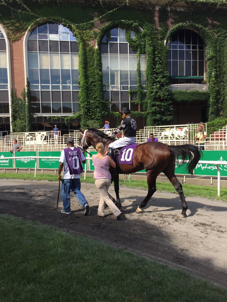 Fournette, the horse, won Friday _lowres