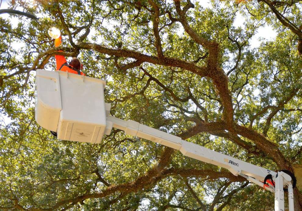 Crews begin replacing streetlights along St. Charles Avenue _lowres