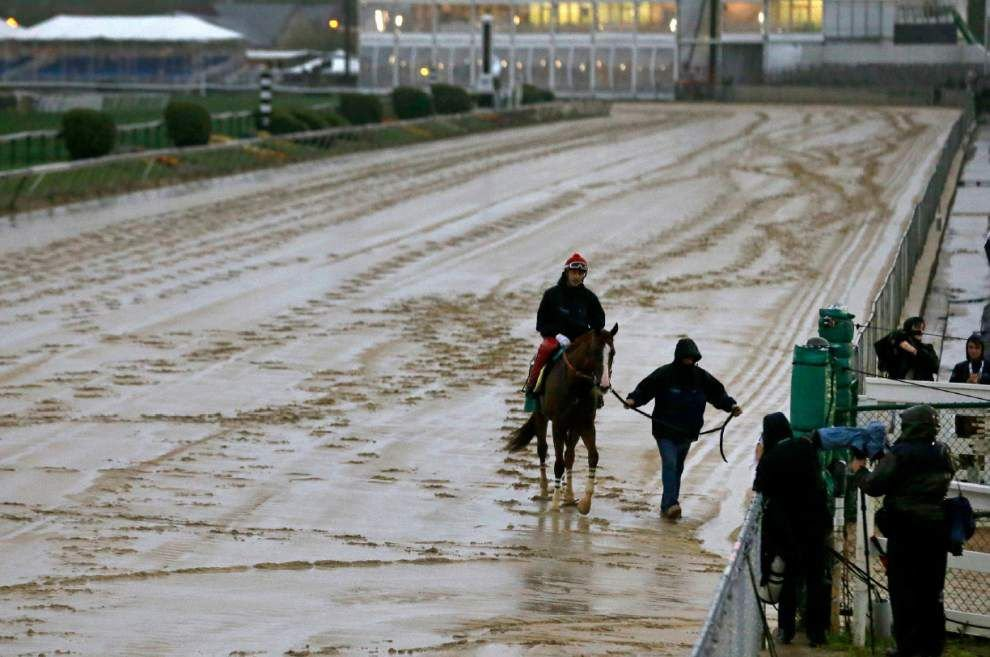 California Chrome gallops in slop on Preakness eve _lowres