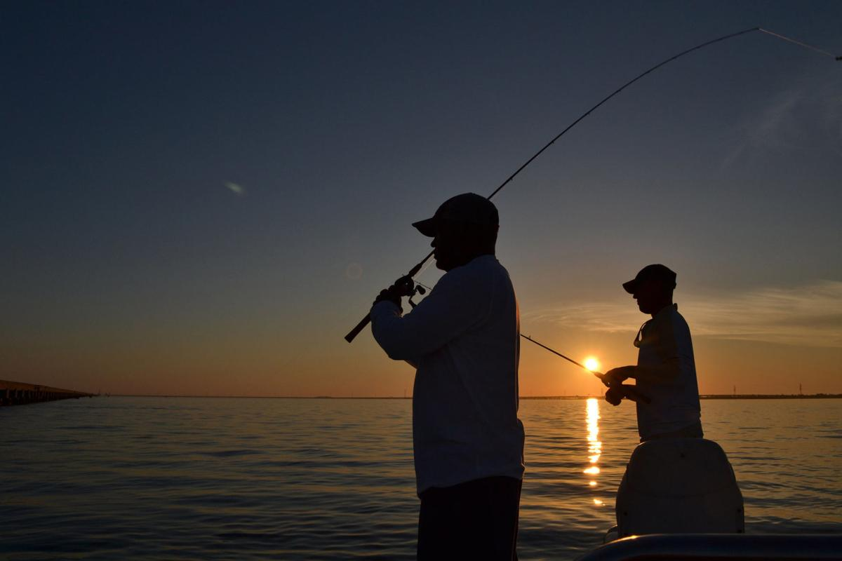 Are Louisiana's anglers selling their speckled trout?