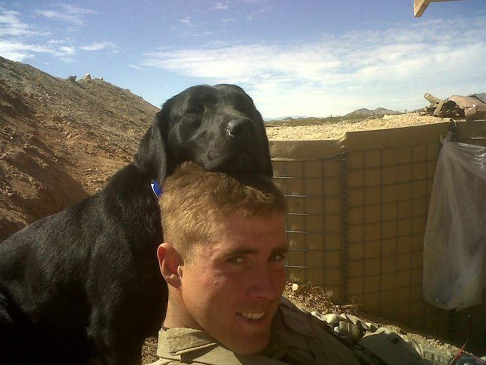 Soldier reunited with canine war buddy _lowres