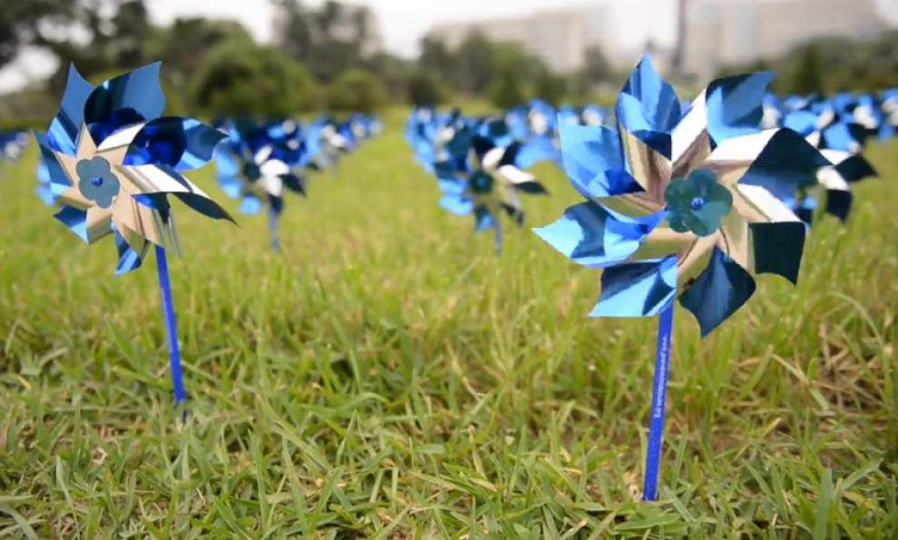 Video: Pinwheels for Prevention _lowres