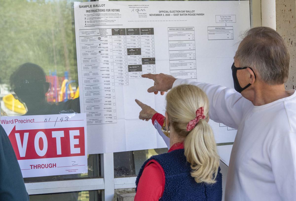 BR.voting.110420 0184 bf.jpg