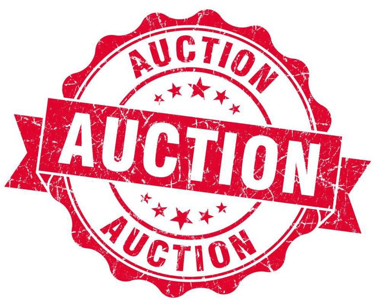 new orleans starts process to auction 1 800 tax