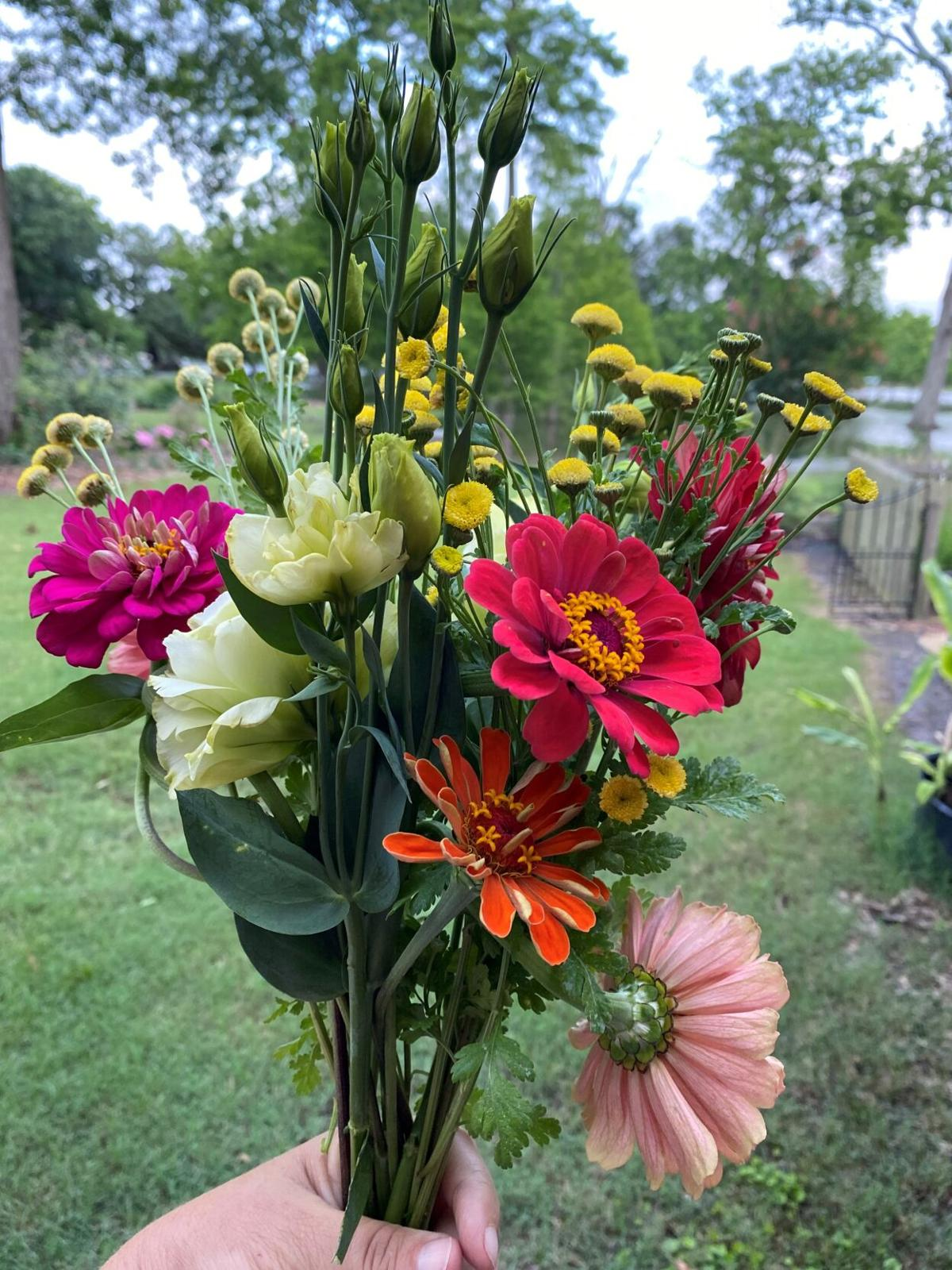 Zinnias, lizianthus and mums make excellent cut flowers for.jpg