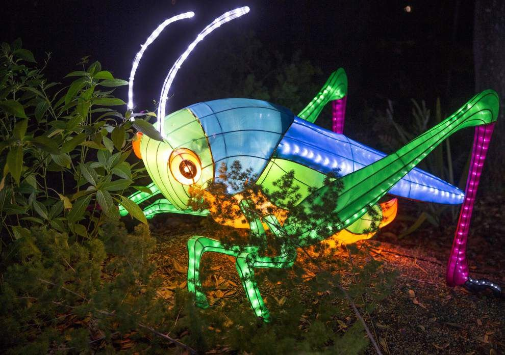 In City Park's 'China Lights,' a garden of shimmering sculptures _lowres