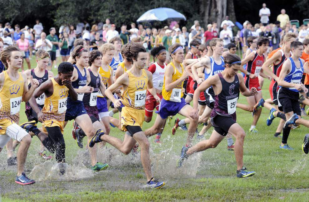 Cross country: Round Table Run _lowres