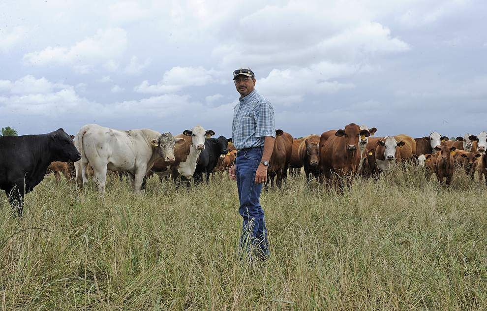 Locals to get a chance to tour 'leauxcal' farms _lowres