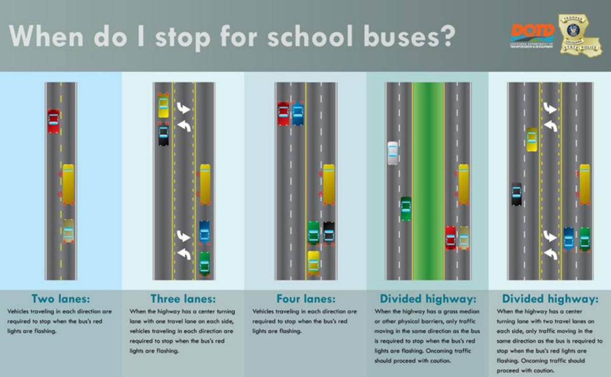 School bus safety graphic