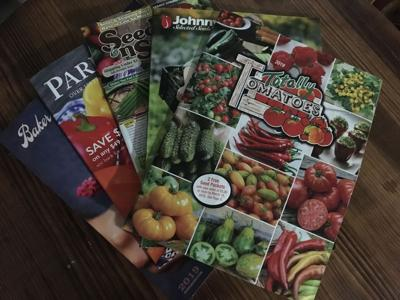 seed catalogs catalogues