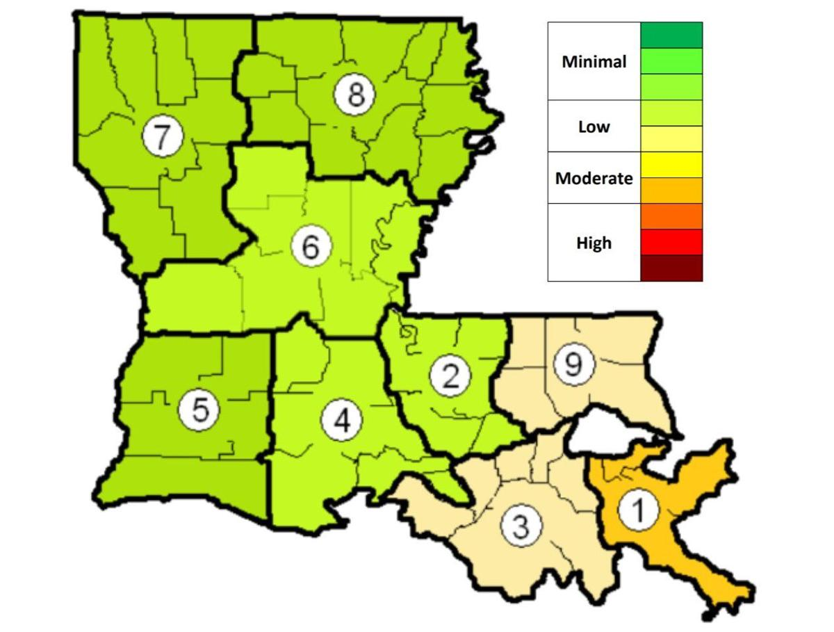 Louisiana flu activity