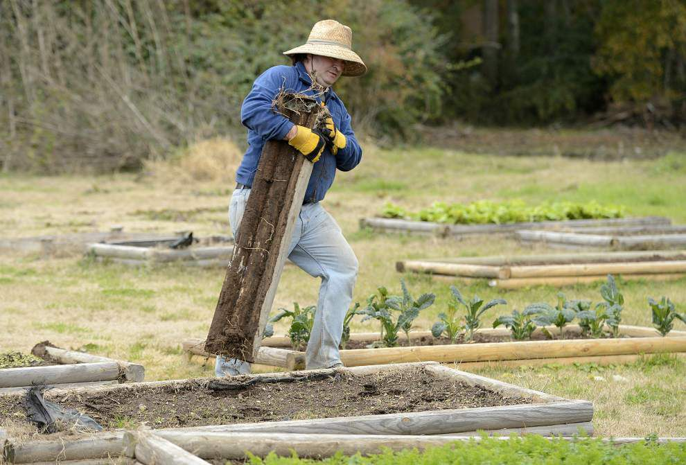 Earthshare Gardens gets new home in Scott _lowres