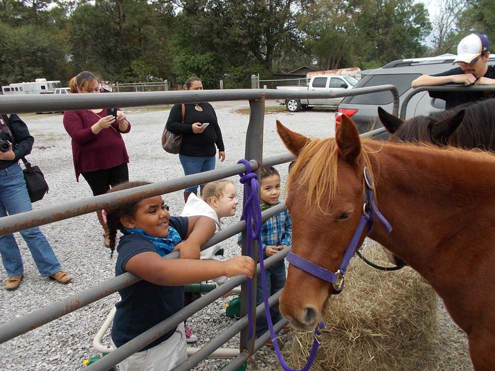 Livingston-Tangipahoa community photo gallery for Nov. 19, 2015 _lowres