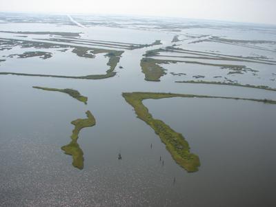 Losing Louisiana
