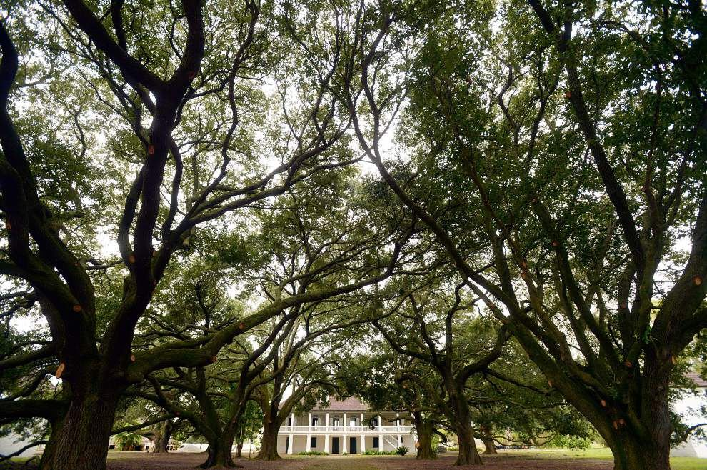 CBS News video on Louisiana slavery museum The Whitney Plantation: Confronting a painful period in American history _lowres