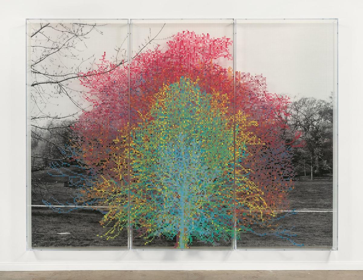 Chalres Gaines_Numbers and Trees_Central Park Series 1_Tree 9.jpg