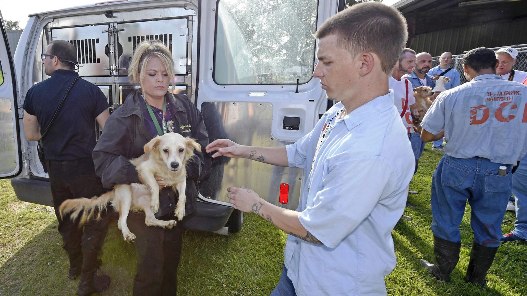 Photos: Rescued Terrytown Dogs are Brought to Dixon Correctional Institute