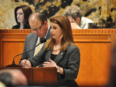 Rep. Julie Stokes announces breast cancer diagnosis, will not run for state treasurer_lowres