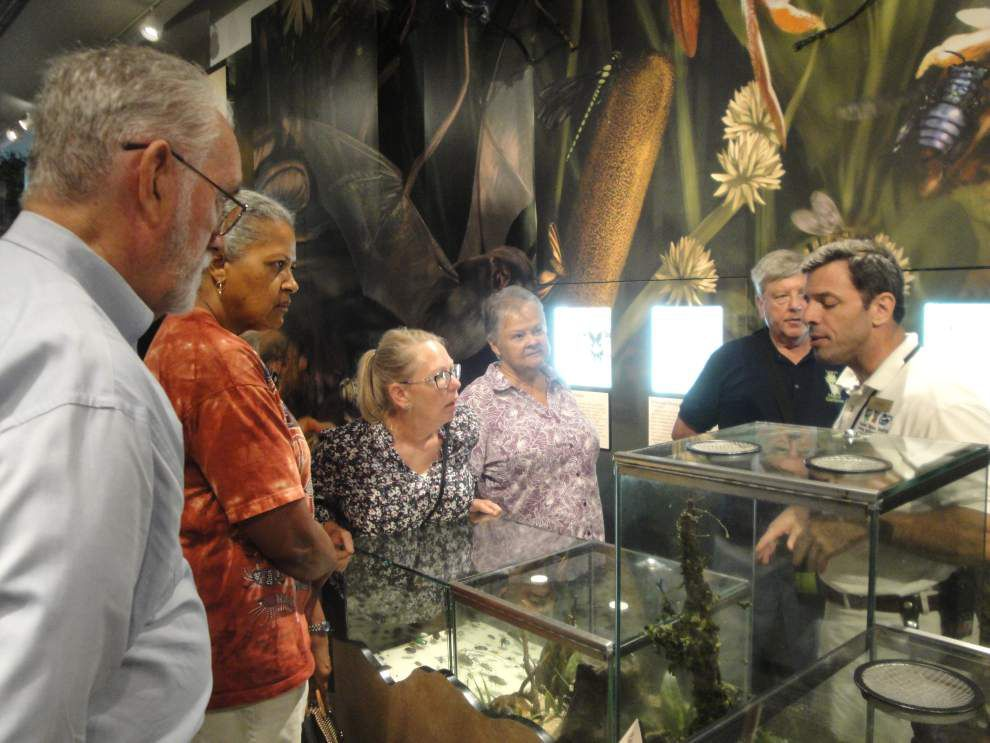 Master gardeners put skills to work for Insectarium _lowres