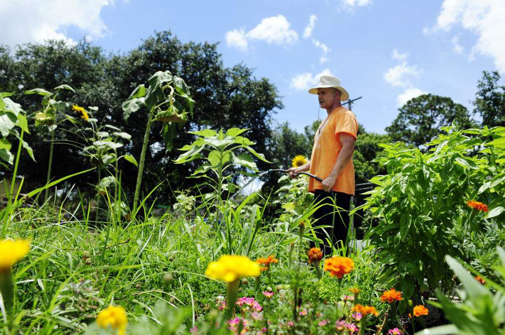 Community garden in Lafayette provides both nature and nurture for residents of the Freetown neighborhood _lowres