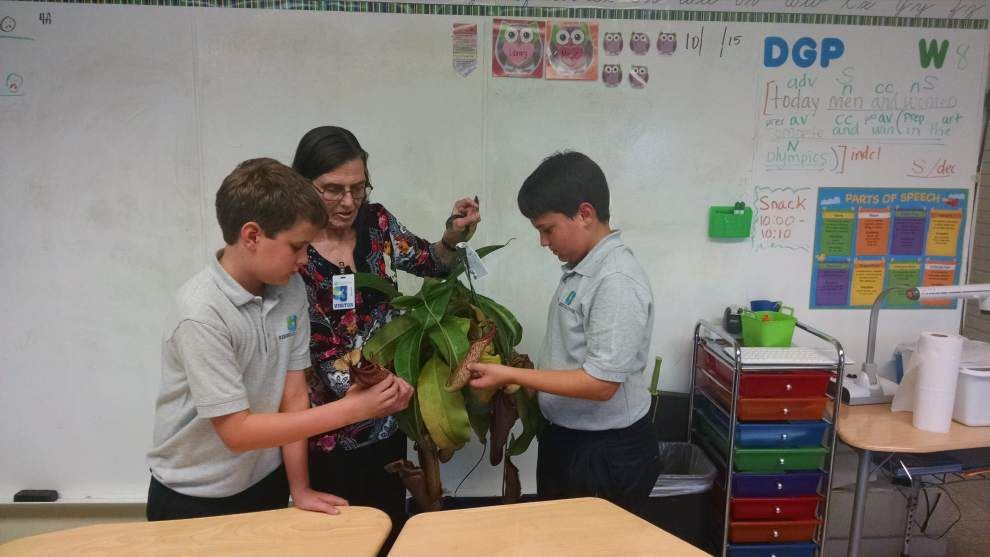 4-H Club students learn about plants _lowres