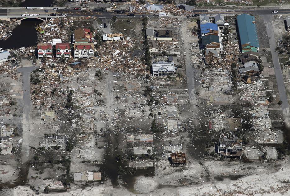 Image result for tree devastation hurricane michael