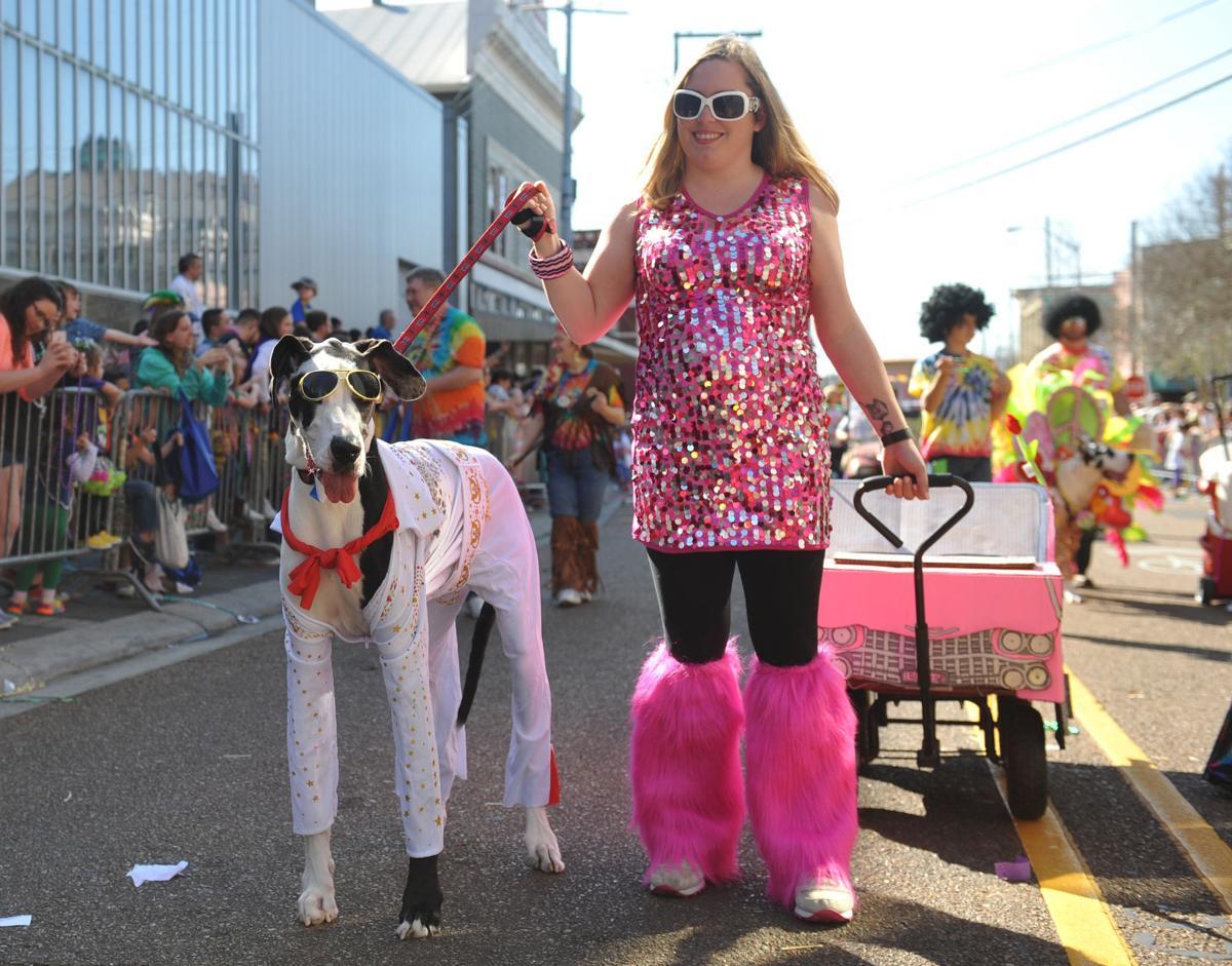 ACA.chiensparade011.021917.jpg