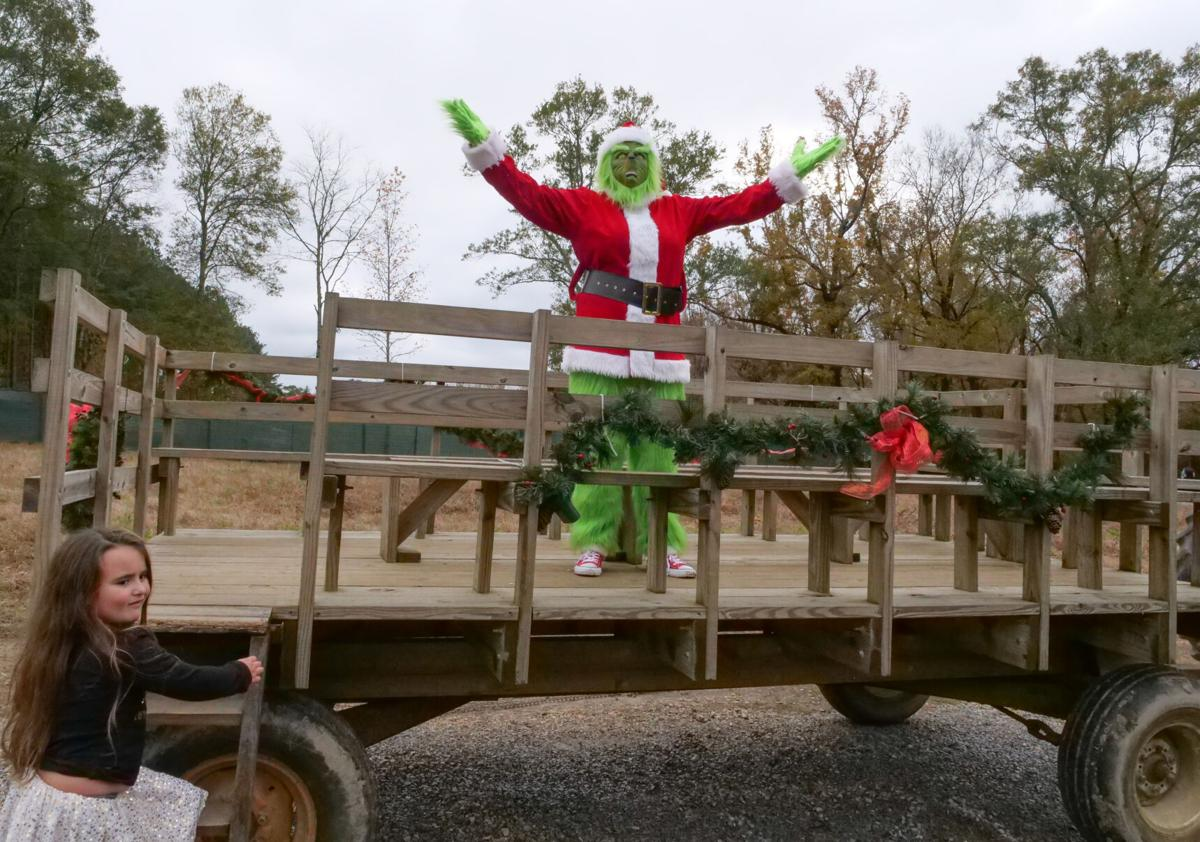 Pancakes with the Grinch at the Barnhill Preserve007.JPG