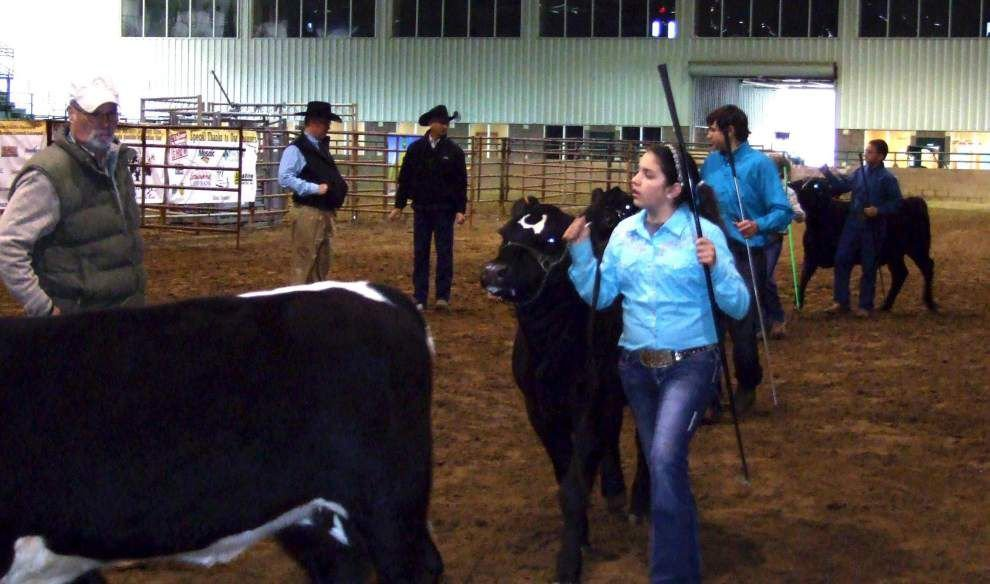 West Feliciana  4-H showing season ends _lowres