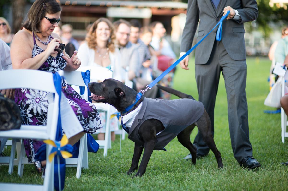 Buddy at Patrick and Koi Beard's wedding