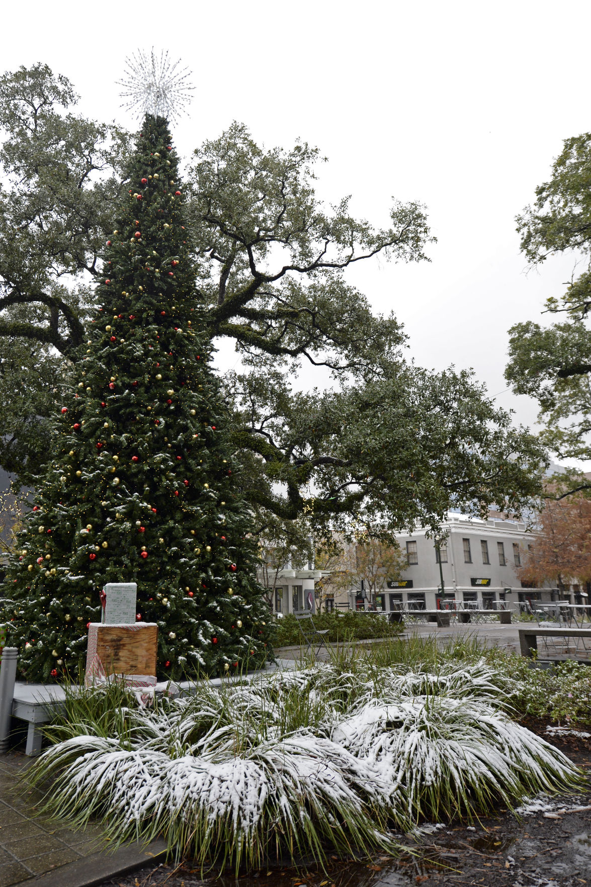 s Snowy Baton Rouge scene Dec 8 2017 from downtown to LSU