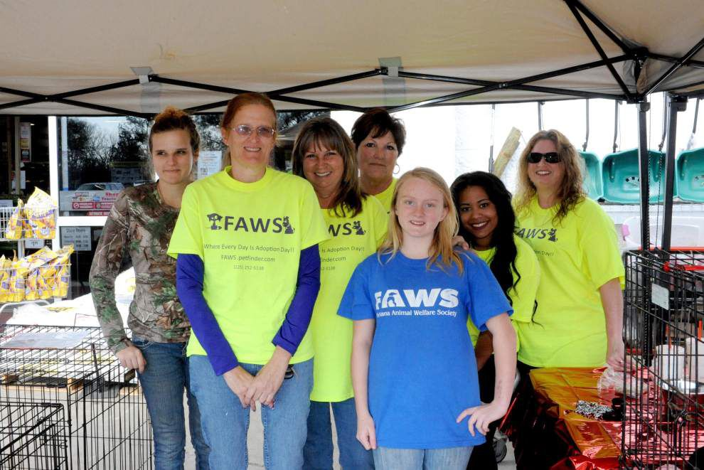 FAWS awarded grant for feline program _lowres