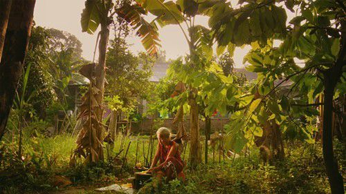 Review: The Look of Silence_lowres
