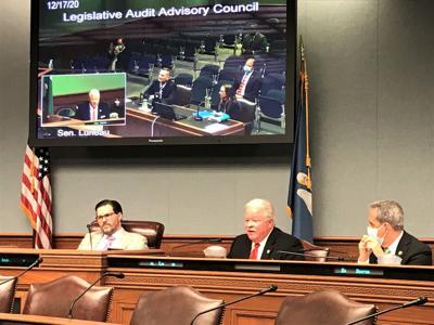 Legislative Audit Advisory Council (copy) (copy)