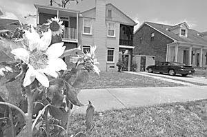 Neighborhood Watch_lowres