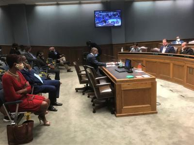 Cleo Fields testifies on police practices task force