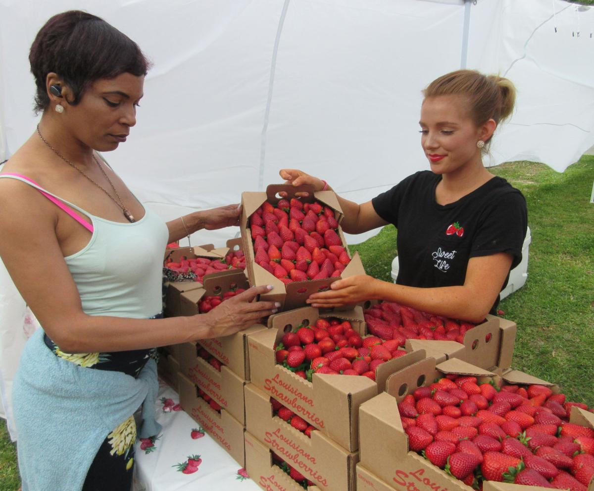 Ponchatoula strawberry festival.JPG (copy)
