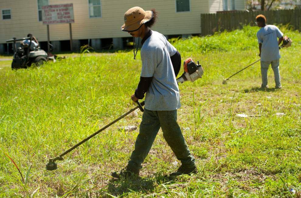 City using new approach to clear overgrown lots _lowres