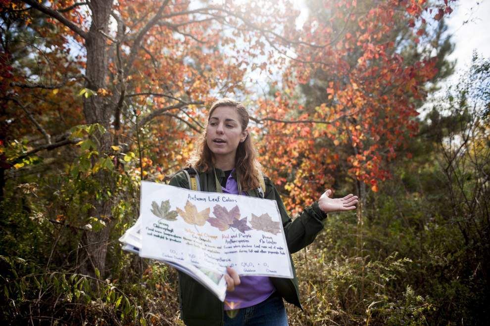 BREC naturalist shares love of nature on 'Woods Walk' excursions _lowres