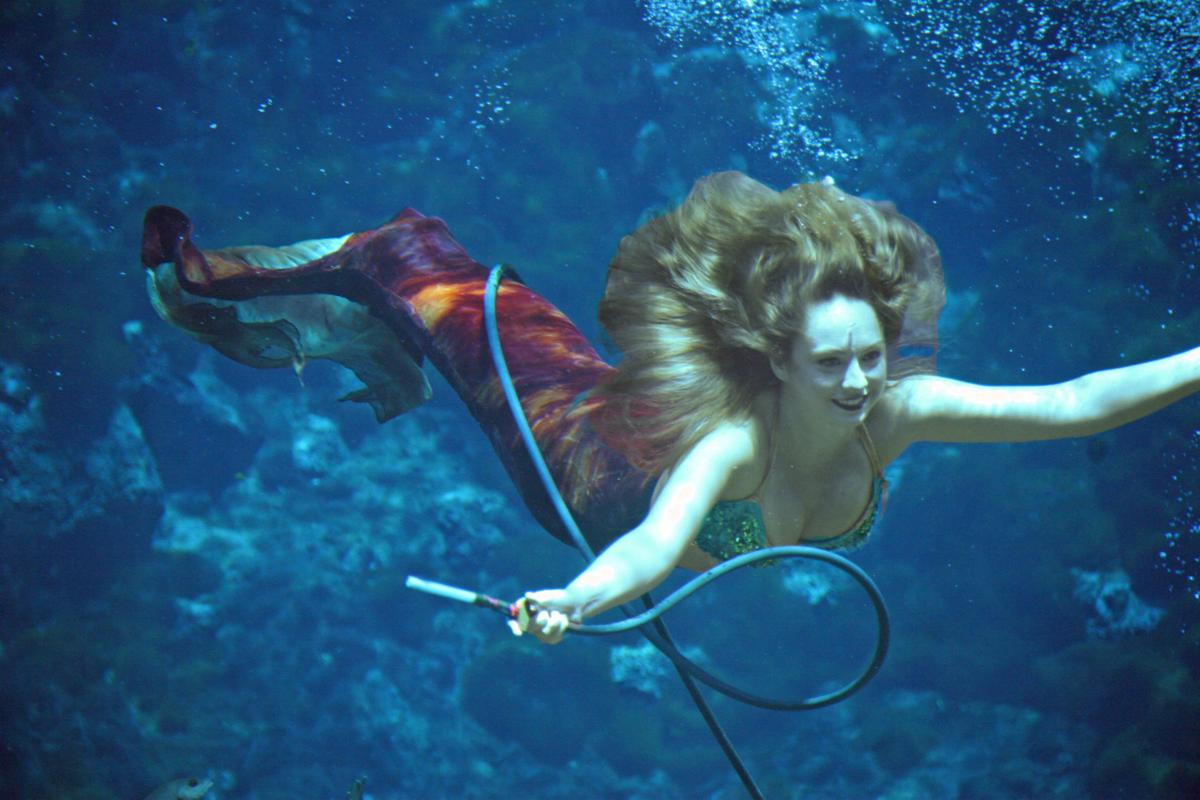 Weeki Wachee mermaids.jpg