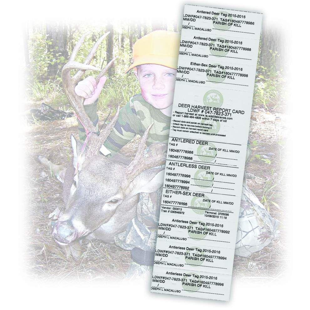 Deer tagging reporting lags _lowres