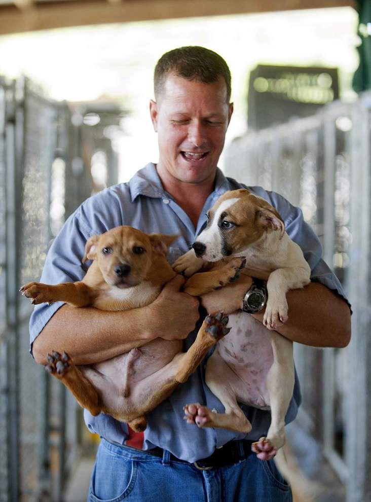 Dixon Correctional's 'Pen Pals' program rehabilitates pets