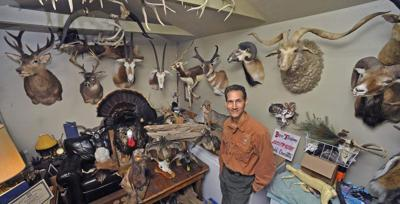 Modern taxidermy: An art form that's come a long way _lowres
