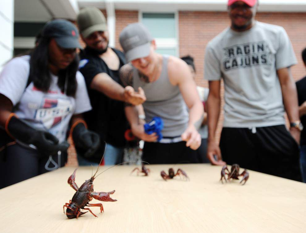 For UL-Lafayette's 'Lagniappe Week,' take 10,000 pounds of crawfish, toss in a pepper-eating contest and enjoy _lowres