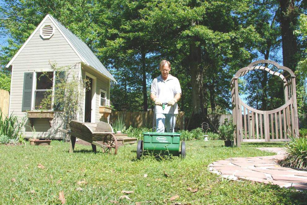 Garden News: Get lawn growing again _lowres