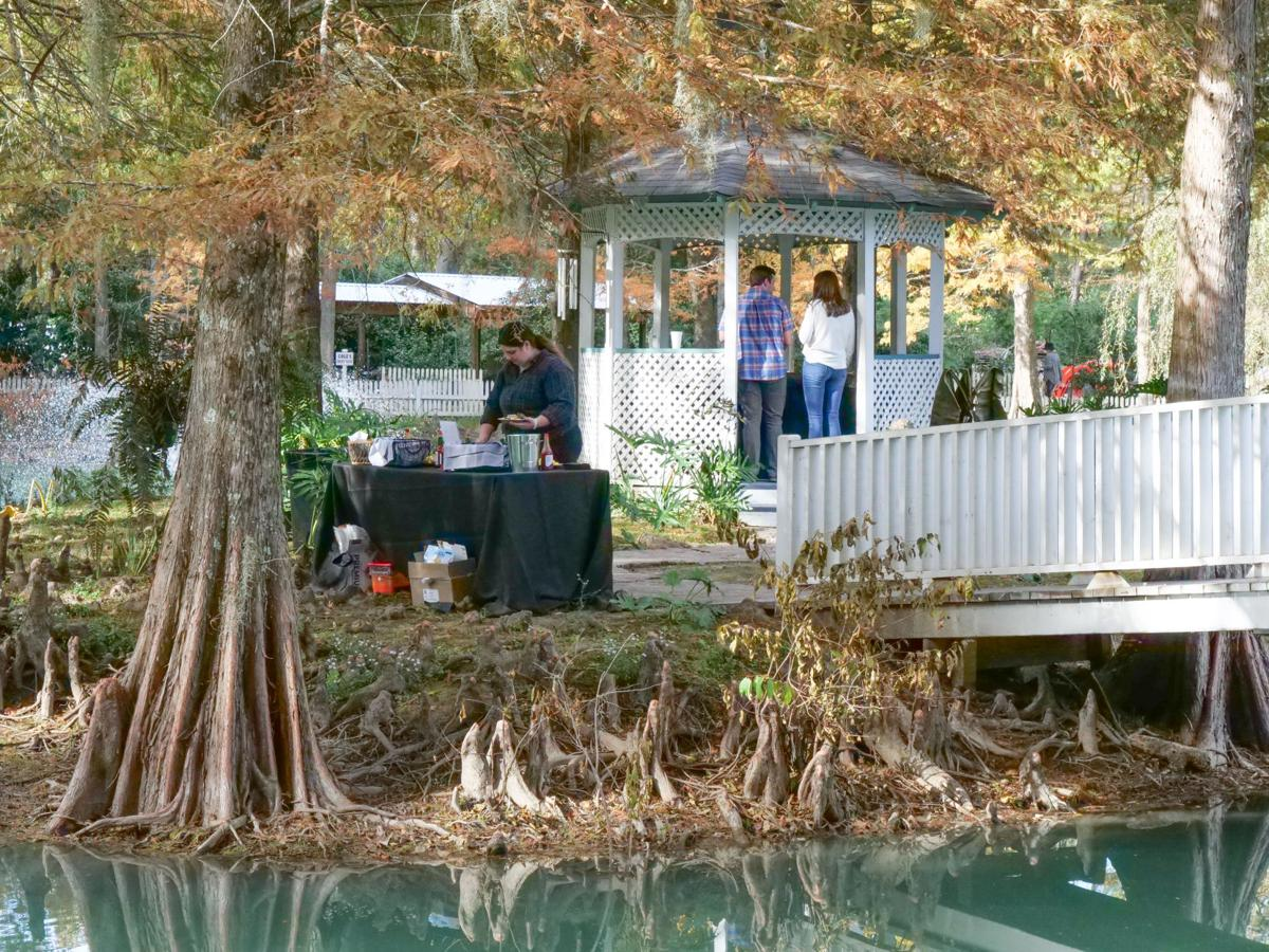 1st Annual St. Francisville Food and Wine Festival012.JPG