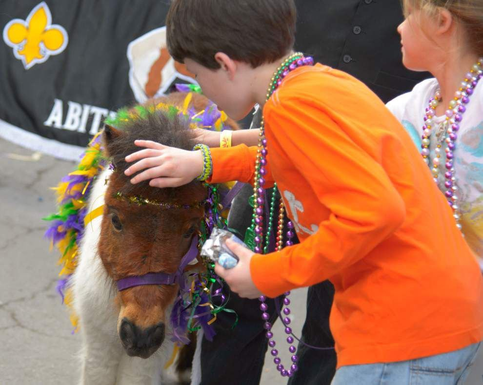 Photos: Krewe of Tucks Livin' the Sportin' Life _lowres