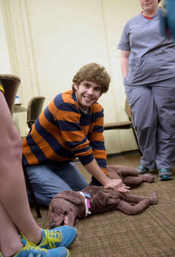 CPR for animals exists, and LSU vet school wants emergency responders to learn it _lowres